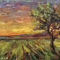 The Sun Rising / El Sol Naciente by Julio Ducuron
