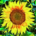 The Sunflower by Mark Kiver