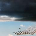 The Swan Formation by Angel  Tarantella