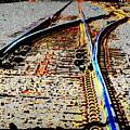 The Switch by Tim Allen