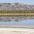 The Temblor Range Is Reflected In Soda by Rich Reid
