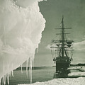 The Terra Nova At The Ice Foot Cape Evans by Herbert Ponting