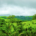 The Terrain Of Costa Rica  by William Rogers