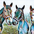 The Three Amigos by Rogue Art