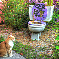 The Toilet Garden by TJ Baccari