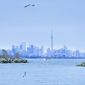 The Toronto Skyline by Bill Cannon