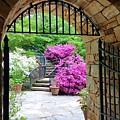 The Tower's Garden Door by Jessica T Hamilton