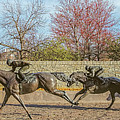 The Track - Thoroughbred Park - Lexington Kentucky Usa by Tony Crehan