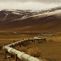 The Trans Alaska Pipeline by Teresa A and Preston S Cole Photography