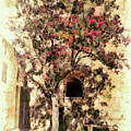 The Tree In The Corner Of The Courtyard by Leigh Kemp