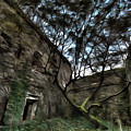 The Tree In The Fort - L'albero Tra Le Mura Del Forte Paint by Enrico Pelos