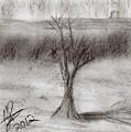 The Tree by Michael Jones