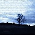The Trees In Winter by Debra Lynch