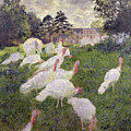 The Turkeys At The Chateau De Rottembourg by Claude Monet