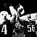 The Under Dogs Philadelphia Eagles by Brian Reaves