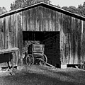 The Undertaker's Wagon Black And White 2 by Steve Gass