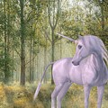The Unicorn by Joy of Life Art Gallery