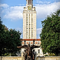 The University Of Texas Tower by Charles Dobbs