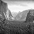 The Valley  by Larry Moore