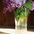 The Vase by Becca Brann
