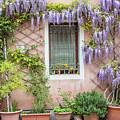 The Venice Italy Window  by John McGraw