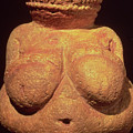 The Venus Of Willendorf by Unknown