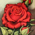 The Very Red Rose by Inese Poga