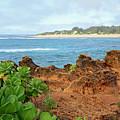 The View At Mahaulepu Beach Hawaii by Bruce Gourley