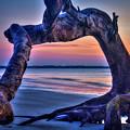 The View Driftwood Beach Jekyll Island Sunrise Art by Reid Callaway