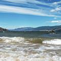 The View From Okanagan Beach by Lisa Knechtel
