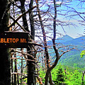 The View From Tabletop Mountain Adirondacks Upstate New York Sign by Toby McGuire