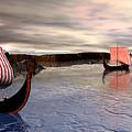 The Vikings Are Here by John Junek