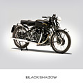The Vincent Black Shadow by Mark Rogan