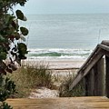 The Walkway To The Beach by Judy  Waller