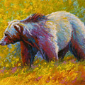 The Wandering One - Grizzly Bear by Marion Rose