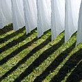 The washing is on the line - shadow play