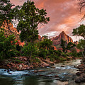 The Watchman Sunset Zion National Park by Scott McGuire