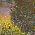 The Water Lilies, Setting Sun by Claude Monet