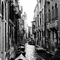 The Waterways Of Venice by Shelly John
