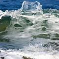 The Wave by Mesa Teresita