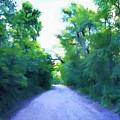 The Way Home by Jim Buchanan