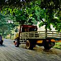 The Way To Tanjung Uma by Beni Yulianto