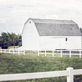 The White Barn by Lisa Russo