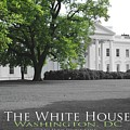The White House by Jost Houk