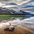 The Wild Shores Of Maligne Lake by Pierre Leclerc Photography