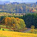 The Willamette Valley by Margaret Hood