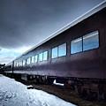 The Windows Of The Train by Tara Turner