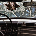 The Windshield  by Daniel George