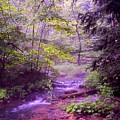 The Wonder Of Nature by John Stuart Webbstock