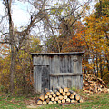 The Wood Shed by Lorraine Baum